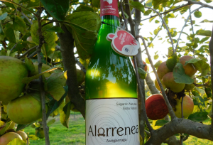 sidra natural pais vasco alorrenea
